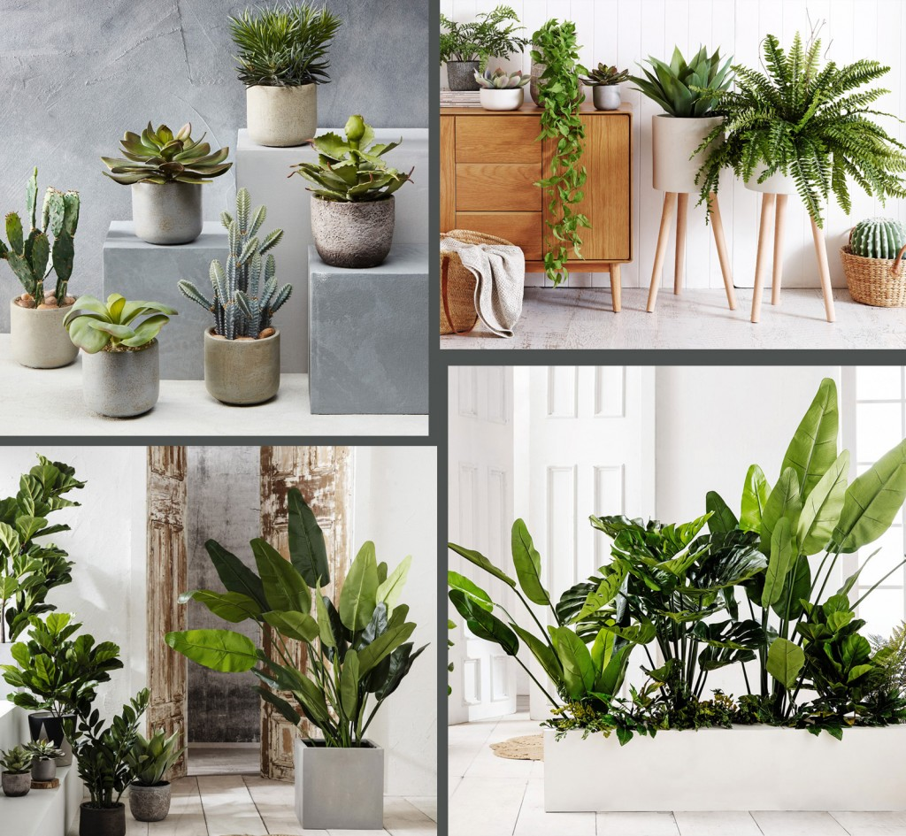 Here's Why You Should Fill Your Home With Gorgeous Greenery From Domayne